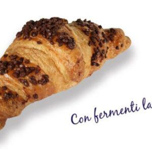 0259001 - Croissant surg