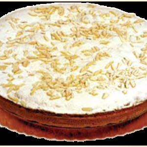 0259003 - Torte surg